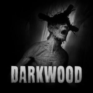 Cover Darkwood (Nintendo Switch)