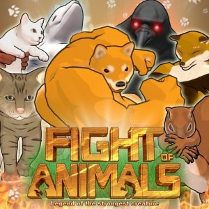 Cover Fight of Animals