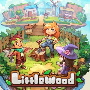 Cover Littlewood