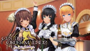 Cover Custom Order Maid 3D2 ~ It's a Night Magic ~