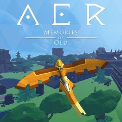 Cover AER: Memories of Old