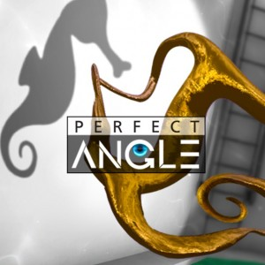 Cover Perfect Angle