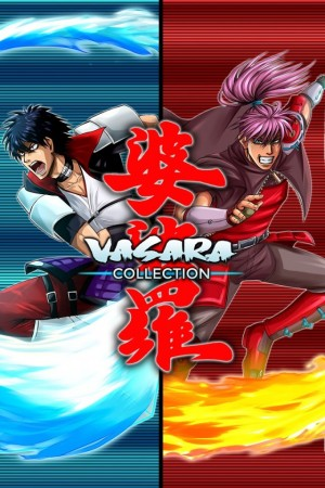 Cover Vasara Collection