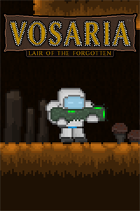 Cover Vosaria: Lair of the Forgotten