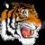 Logo Tutto Giochi