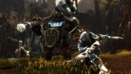 Immagine Kingdoms of Amalur: Re-Reckoning (PC)