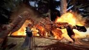 Immagine Immagine Dragon's Dogma: Dark Arisen Nintendo Switch