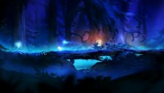 Immagine Ori and the Blind Forest: Definitive Edition (Nintendo Switch)