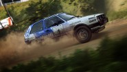 Immagine DiRT Rally 2.0 PlayStation 4