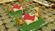 Immagine Story of Seasons (3DS)
