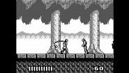Immagine Castlevania Anniversary Collection (Nintendo Switch)
